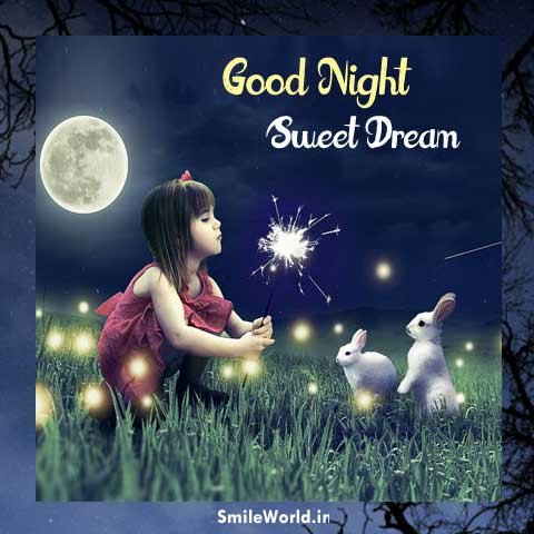 Good Night Shayari in Hindi for Girlfriend With Images