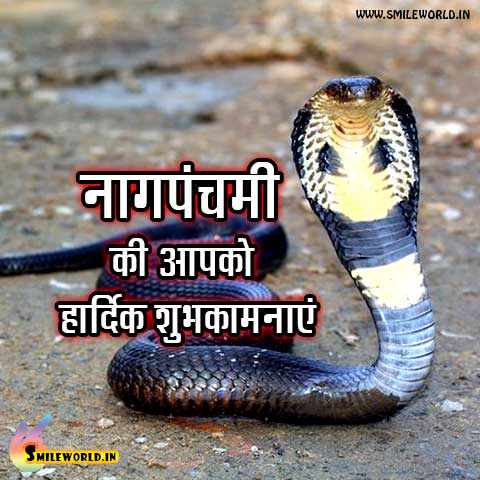 Nag Panchami Wishes Images for Whatsapp Status