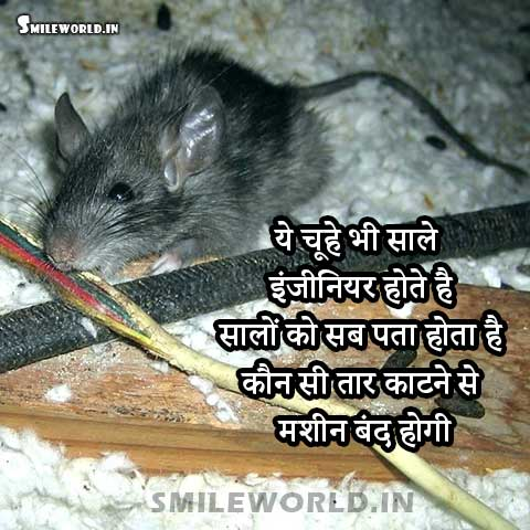 Rat Mouse Cutting Wire Engineer Jokes in Hindi