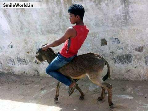 Indian Boy Riding Donkey Funny Photos
