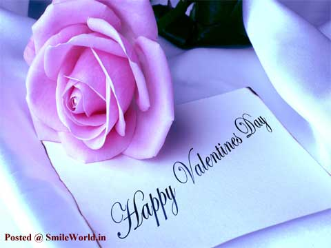 Cute Pink Rose Valentines Day Wishes Images