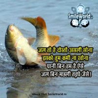 Best Quotes and Slogans on Save Water in Hindi