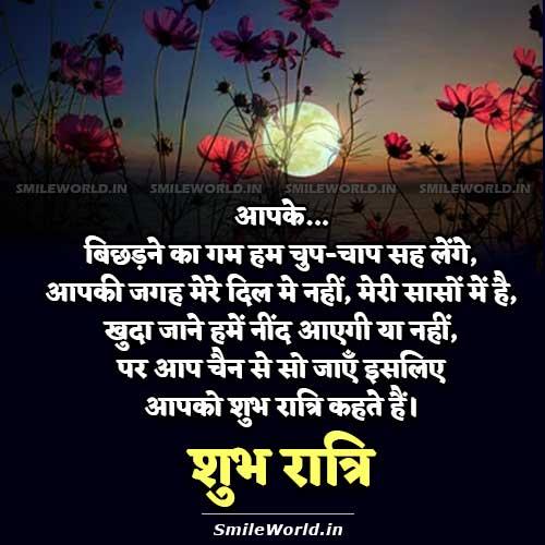 Good Night Love Shayari in Hindi Image Wallpapers
