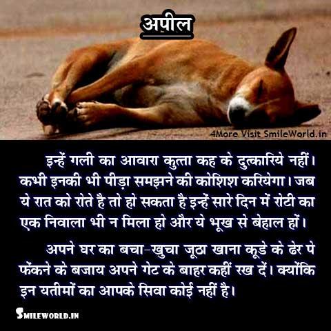 Dog Quotes in Hindi - SmileWorld